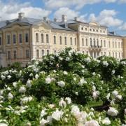 Rundale-rose-gardens